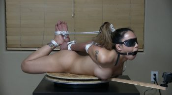 Endurance Hogtie Custom Video