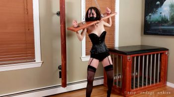 Hannah vs. The Stock Test – BondageJunkies