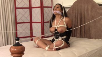 Ballgag Strappado CleaveGag and Ropes for Priya Price – BEDROOM BONDAGE by Lorelei