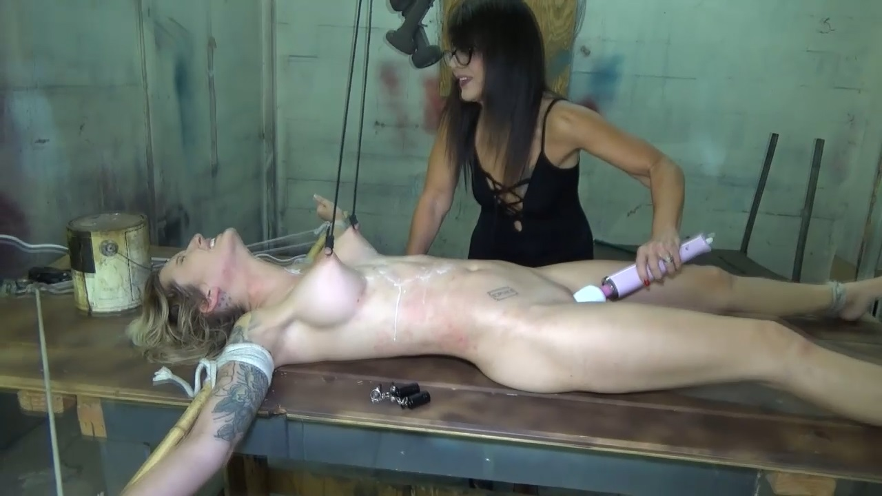 The destruction of spy reagan lush