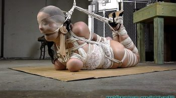 JJ Plush hogtied with a Lot of Rope – Part 3 – Futile Struggles
