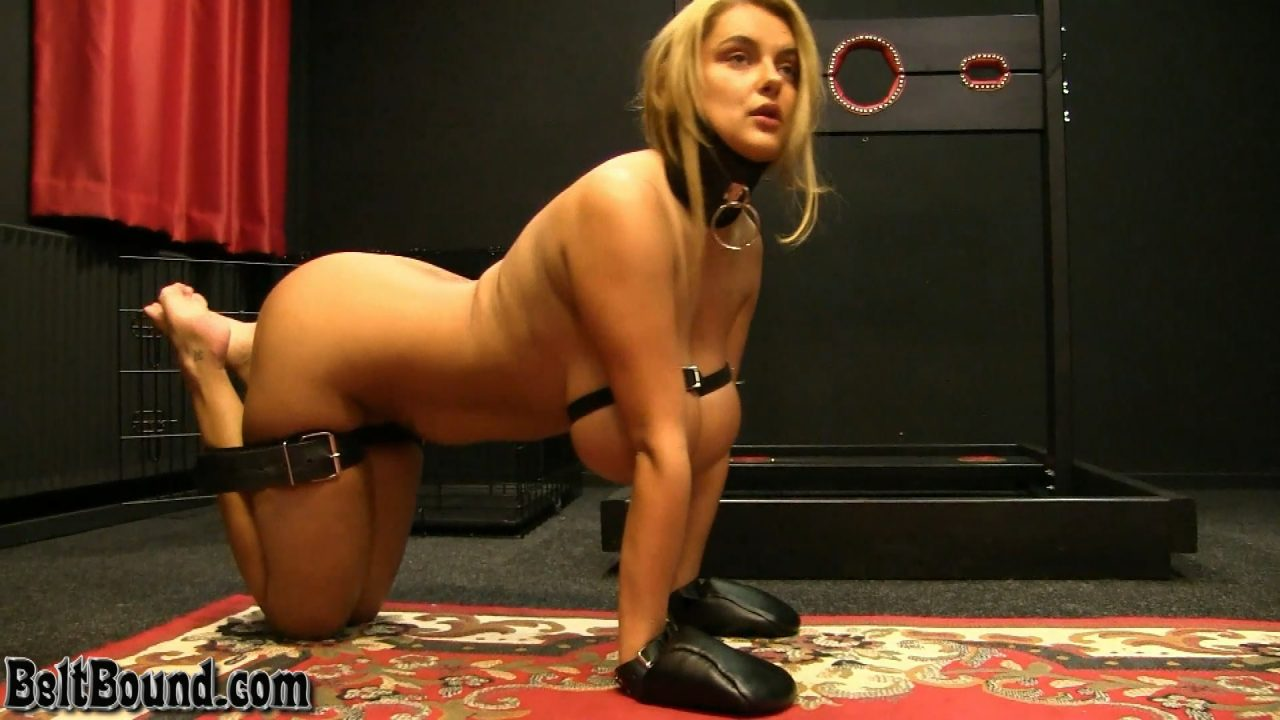 Katie Thornton_leather bondage pet