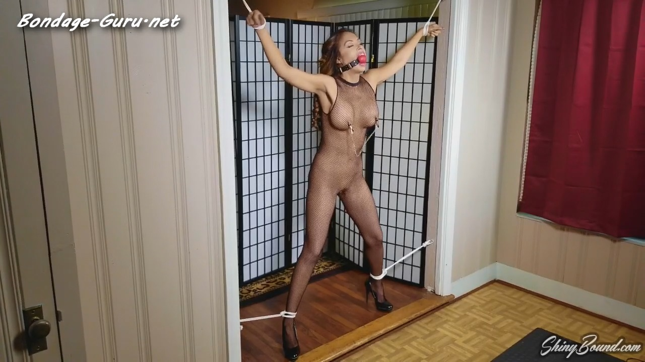 Lucy Purr The Pleasure Prisoner part_1