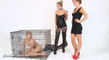 No Such Thing as a Free Puppy! – Bound Honeys Exclusiv