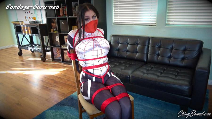 Cassandra Cain_The Silk Spider