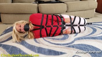 Dakkota Grey Harnessed and Helpless – Cinched and Secured