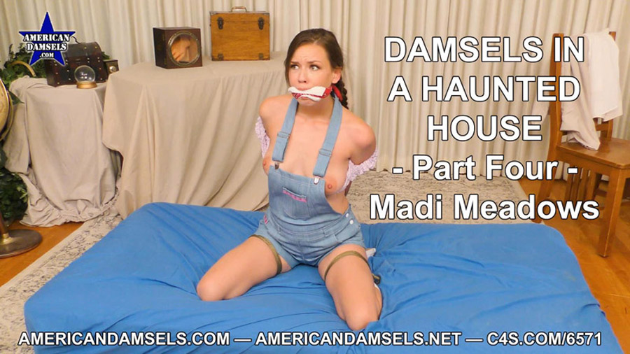 Damsels In A Haunted House Part Four Madi Meadows